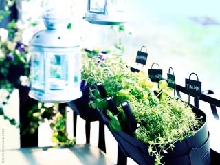 Balkon - Aranżacja z ziołami