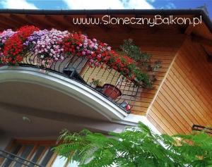 Słoneczny balkon w kwiatach