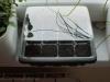 2013-02-04 posiana bazylia, trawa cytrynowa i stewia