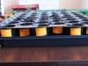 2013-03-23 zasiane od lewej - 3x pomidory, 2x papryka słodka, 1x cukinia