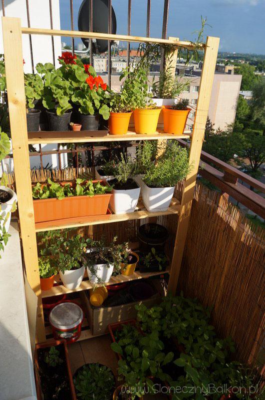 2014-05-30 słoneczny balkon