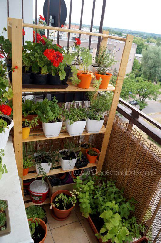 2014-06-22 słoneczny balkon