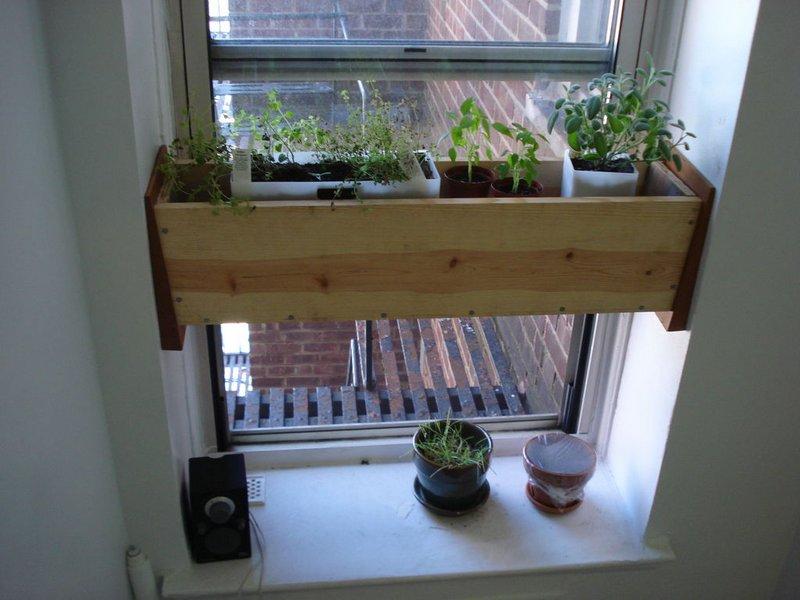 świeże Zioła W Kuchni Tak Słoneczny Balkon
