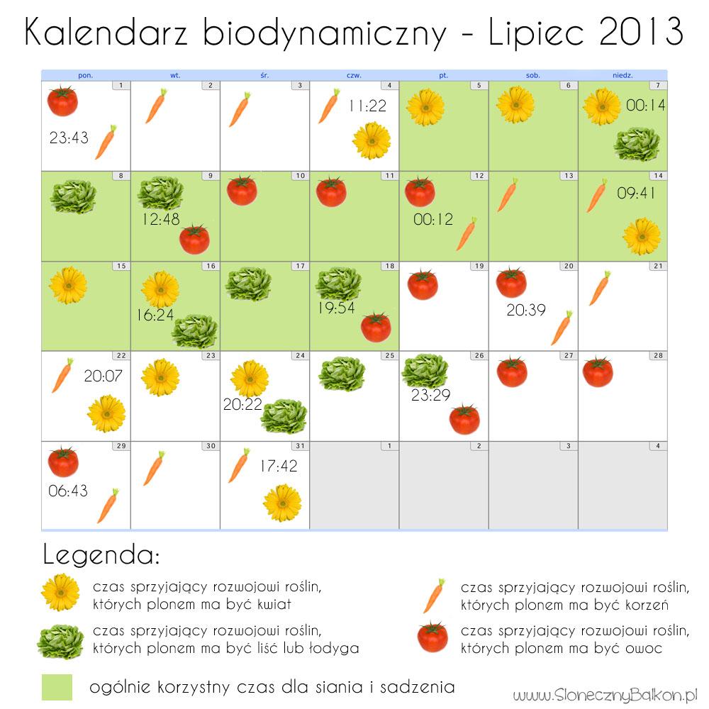 Kalendarz biodynamiczny na wakacje – lipiec i sierpień 2013