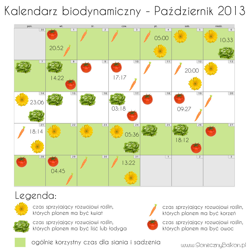 Kalendarz biodynamiczny - październik 2013