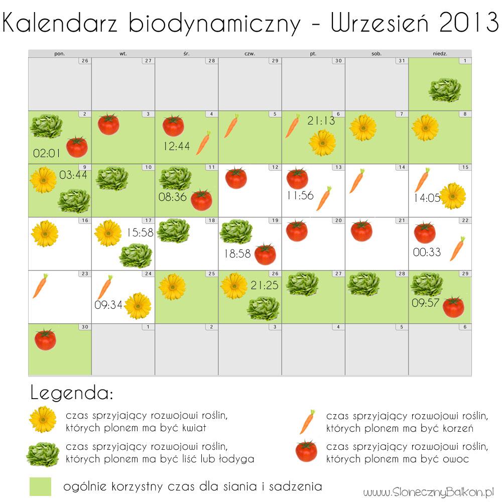 Kalendarz biodynamiczny - wrzesień 2013