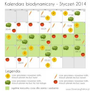kalendarz biodynamiczny styczen 2014