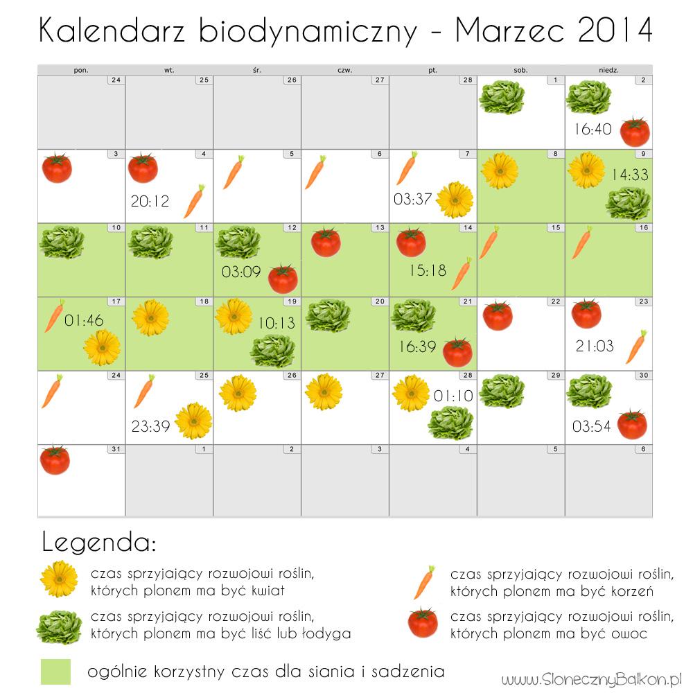 Kalendarz biodynamiczny marzec 2014 – siejemy siejemy :)