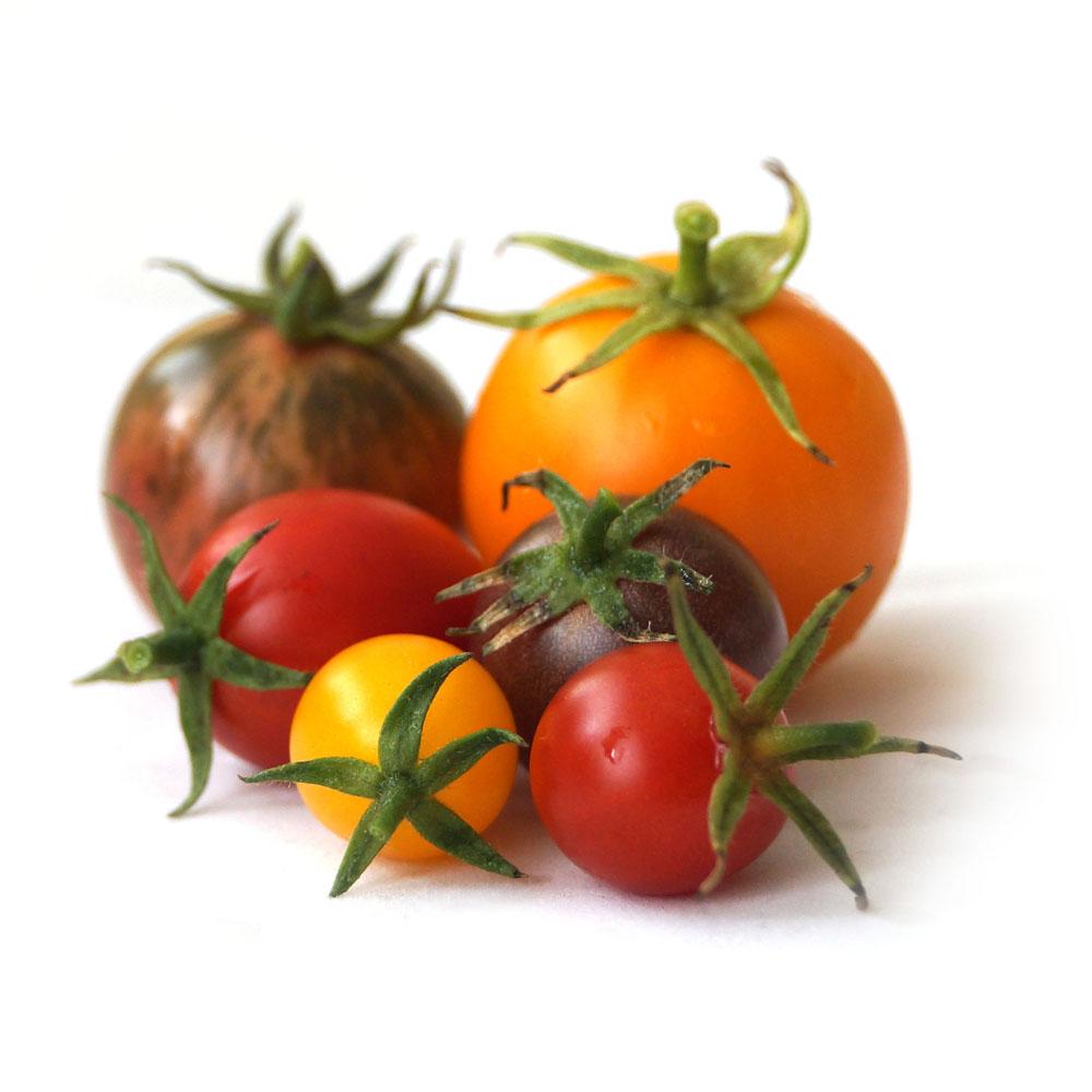 Przegląd odmian pomidorów z sezonu 2014