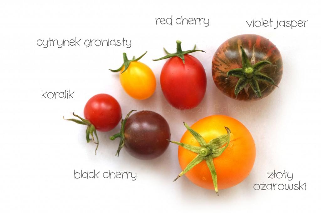 pomidory-opisane