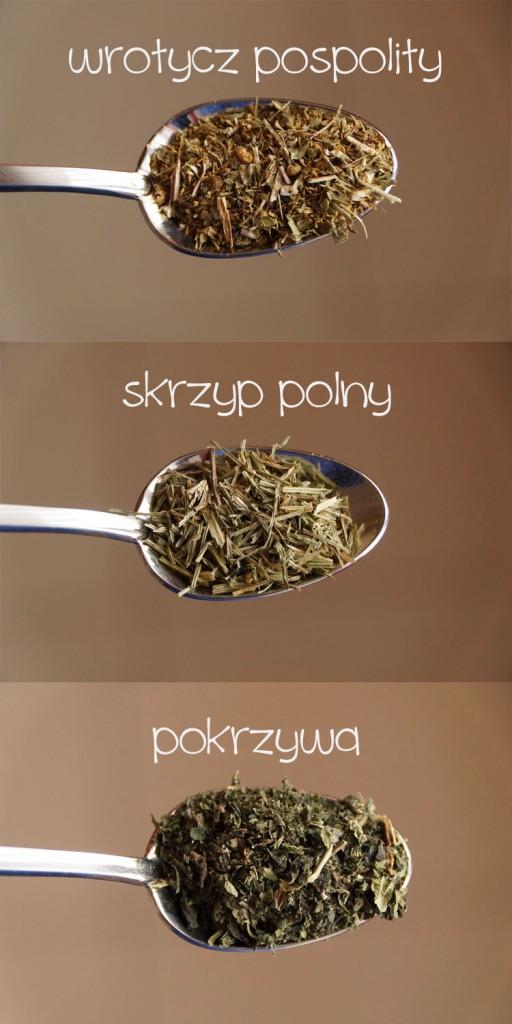 susze-roslinne-skrzyp-pokrzywa-wrotycz