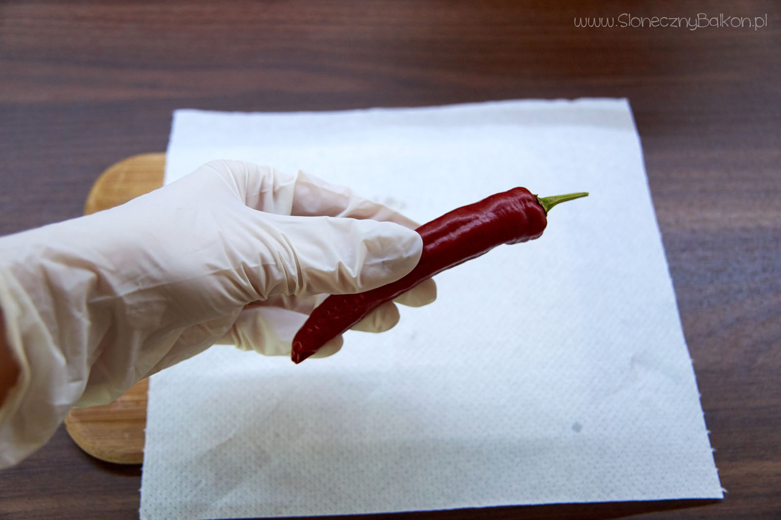 chili-nasiona-4