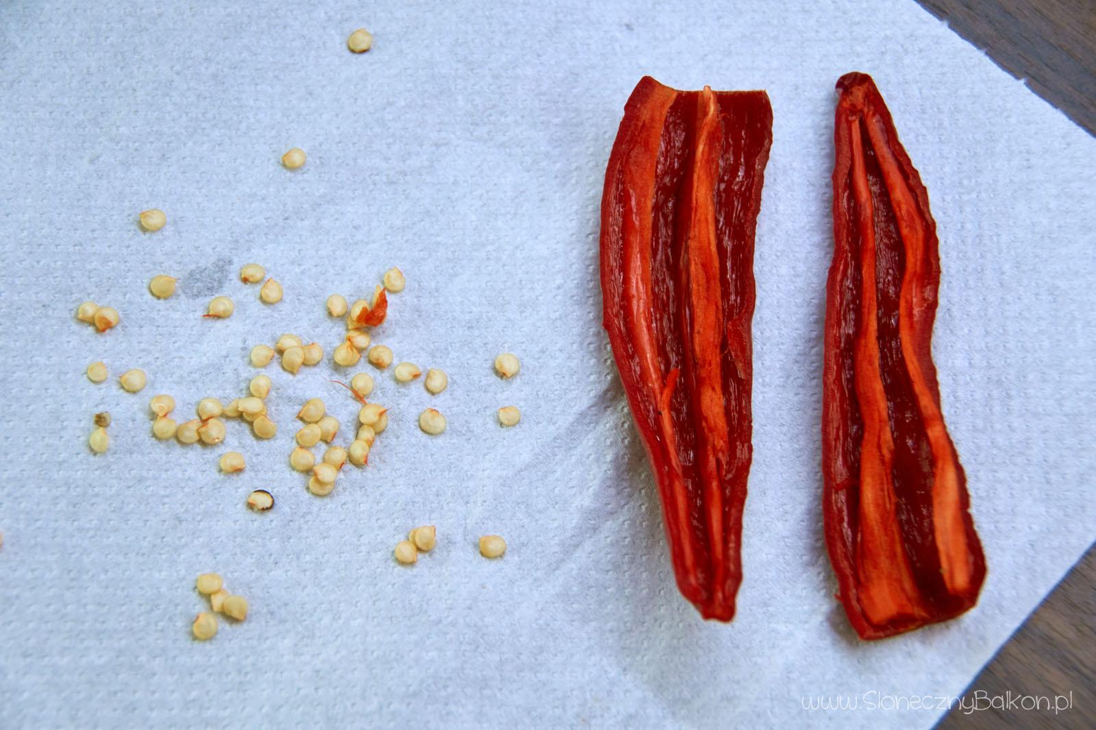 chili-nasiona-6