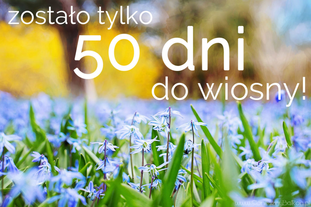 wiosna2