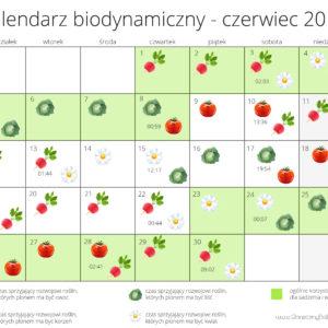 kalendarz biodynamiczny - czerwiec 2017