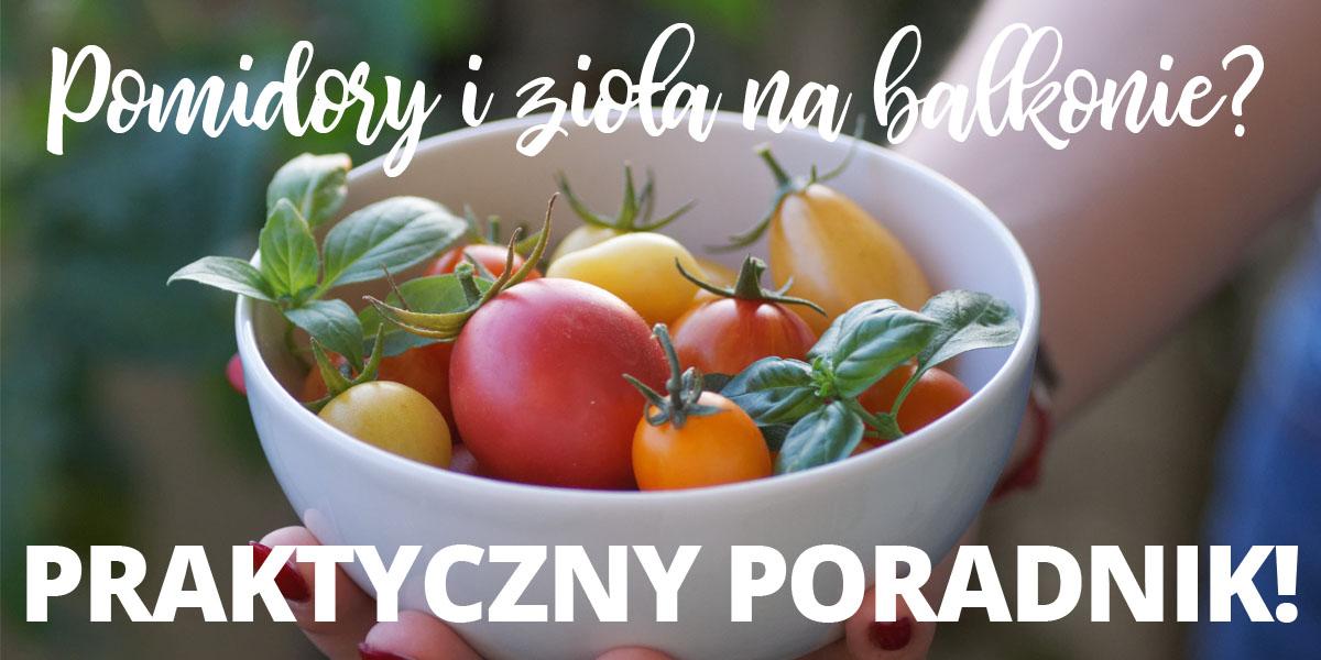 Pomidory i zioła na balkonie? Praktyczny poradnik jak zacząć!